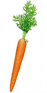 La zanahoria es un alimento con vitamina A