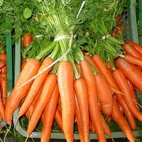 Las zanahorias son alimentos rico en vitamina A